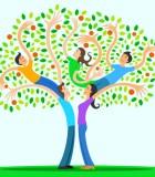 Tree assessmentopt