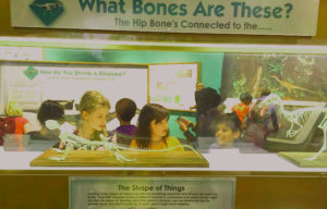 Boston Science Museum (Jain Mullen Vagner) Education outside the classroom pic 3optimized