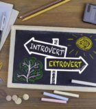 Inntrovert extrovert XXL pictureopt