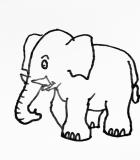 Elephant-one