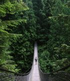 A young fit man exploring the wilderness; walking desolate suspension bridges, walking around a blue alpine lake, and driving on the open road.