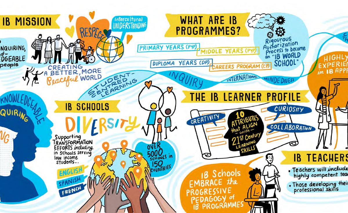 Empowering IB World Schools to nurture creativity and curiosity